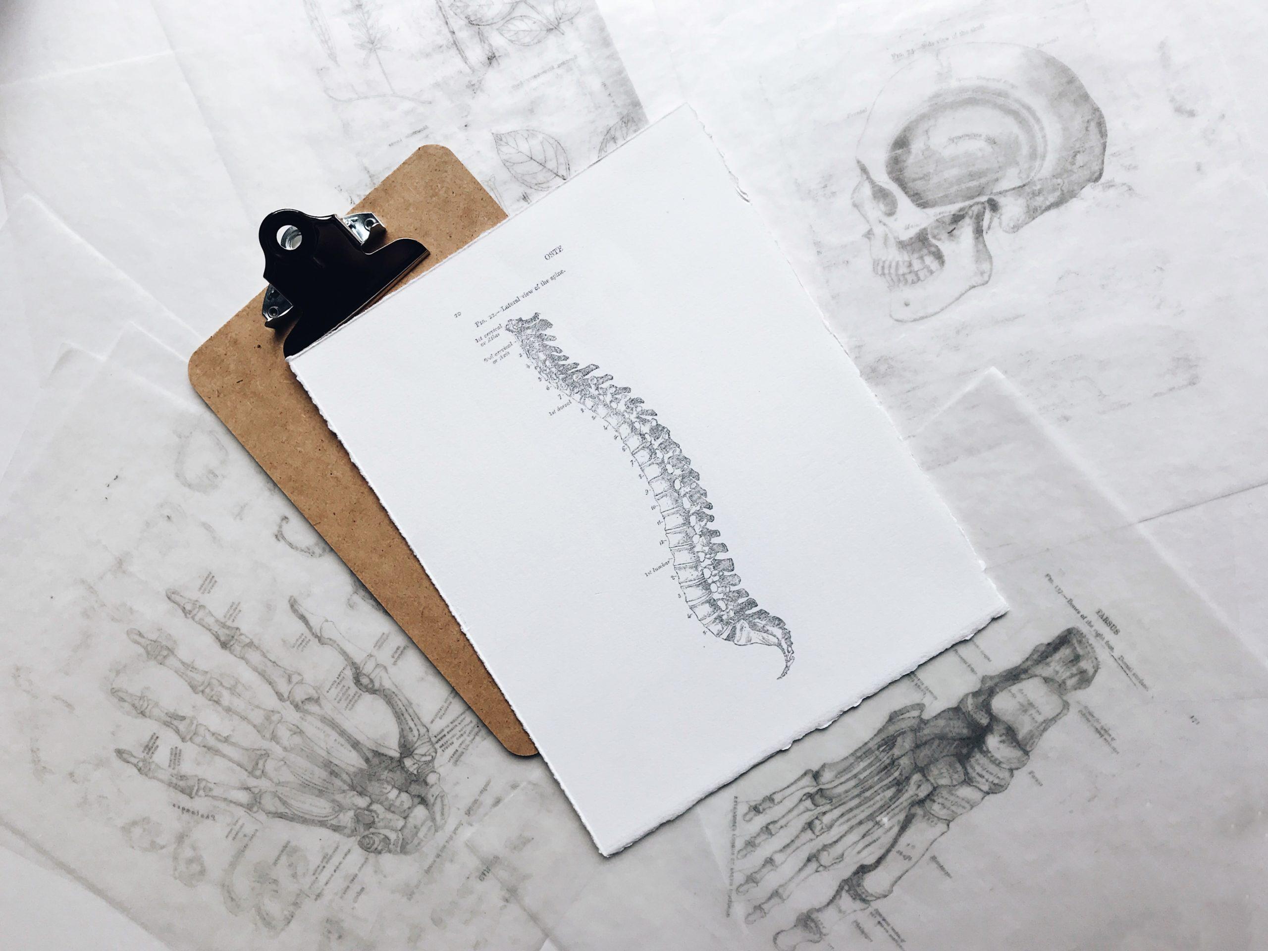 osteopathe la crau-osteopathie la garde-seance d osteopathie hyeres-osteopathe pour bebes toulon-osteopathe en entreprise le pradet-rendez vous osteo var